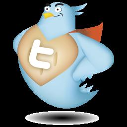 WordTwit 3.0の設定方法と使い方 日本語化 動かない時には